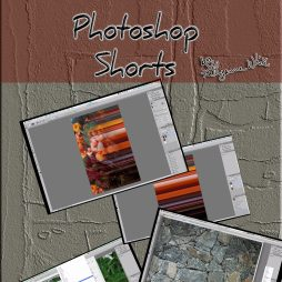 photoshop shorts copy crop
